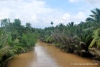 Day Tour in Mekong Delta – My Tho and Ben Tre